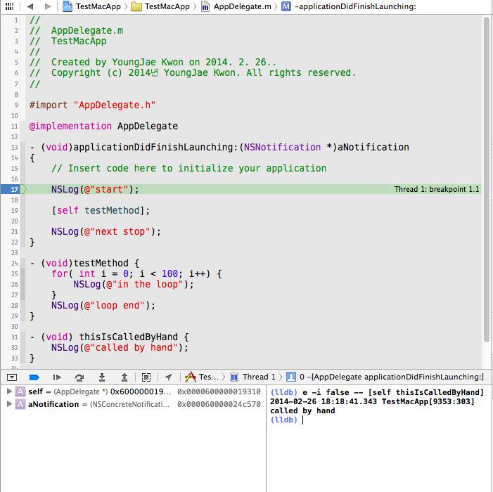 lldb_debug_example